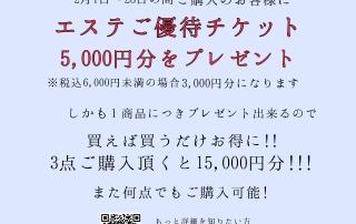 18-02-01-17-31-38-044_deco